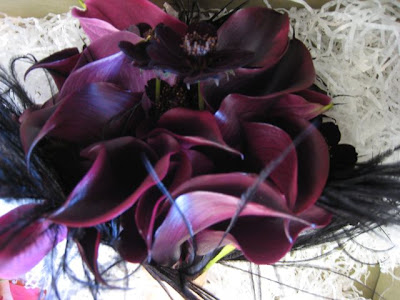 Bride 39s Bouquet with eggplant calla lilies cosmos and black feathers
