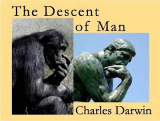 charles darwin essay the descent of man