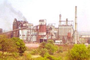 NMDC Plant image
