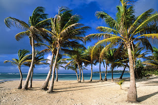 La Caravelle Beach. Grande Terre Island, Guadeloupe, West Indies