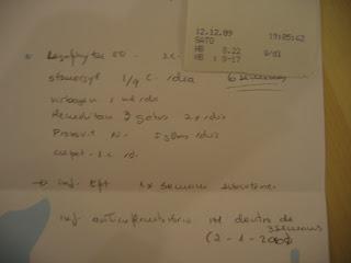 Gaspar, Macho Adulto, FIV +, Margem Sul IMG_1933