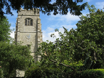 Egerton church tower seen behind an apple tree