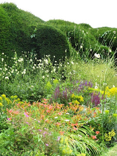Uneven hedge and wild flower border