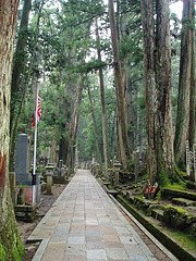 Mt. Koya