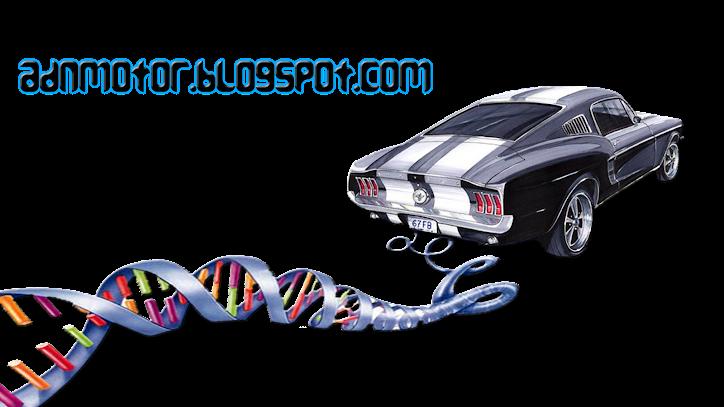 ADN Motor - Todo sobre coches