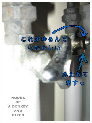 シンク下水道管の結露