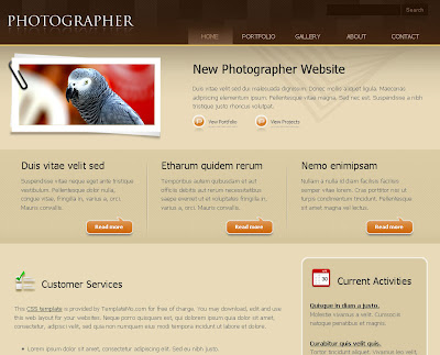 Photographer Blogger Skin