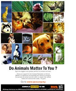 Animals MATTER T0 Me!