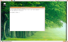 screenshot linux
