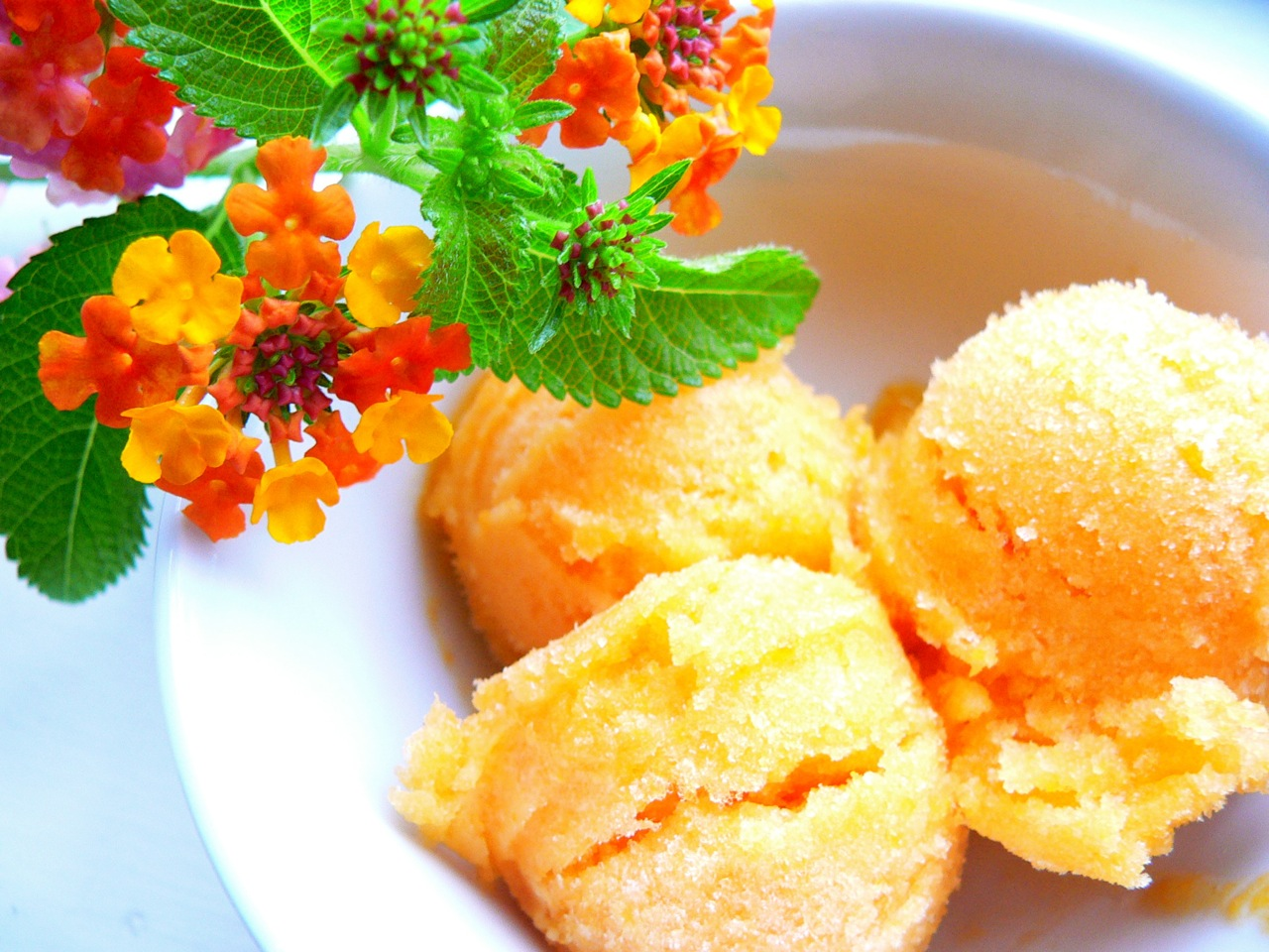 Apricot Champagne Sorbet | The Frozen Fix: Ice cream ...