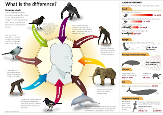 difference between humans and animals