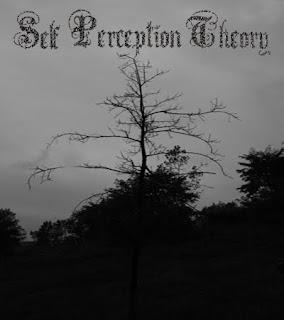 Self Perception Theory – Self Perception Theory – (2009)