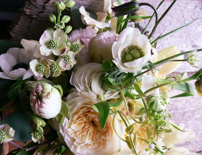 [spring_flowers.jpg]