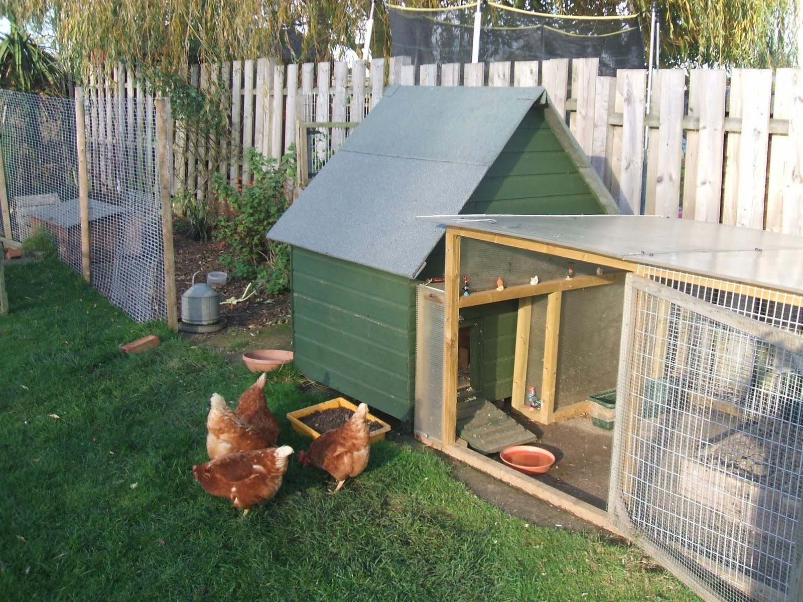 How to build a hen house for Building a house