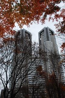 都庁の写真