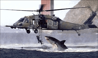 Charles Maxwell: Shark attacks helicopter
