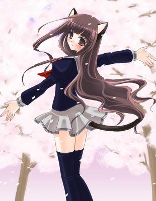 Anime i manga world kotki anime d - Fille manga chat ...