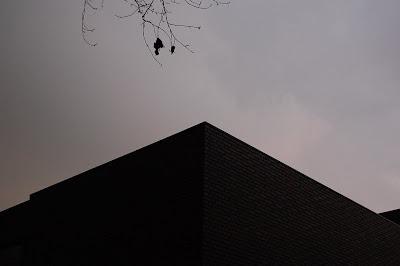 Ueno mon amour - tracina,2008