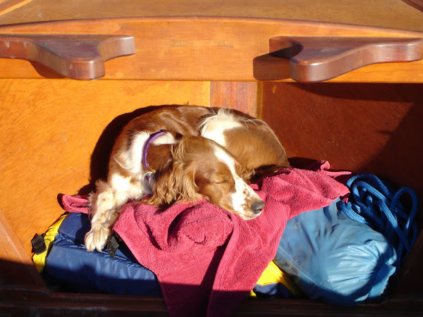 Below the deck, sleeps a dog