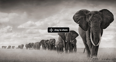 immagini ed emozioni in africa