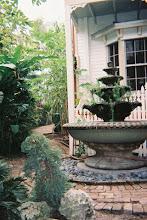 Miss Vicky's garden