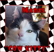mabel cow kitty!
