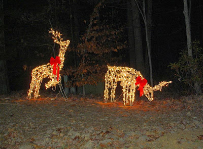 tis the season when people like to burn extra electricity lighting up their homes with christmas lights one of the more popular decorations are deer