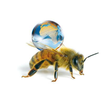 Faute d'abeilles, les paysans du Shaanxi (Chine) pollinisent