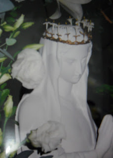 Ave Maria Imaculada!