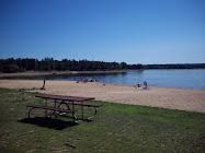 Lake Arbutus