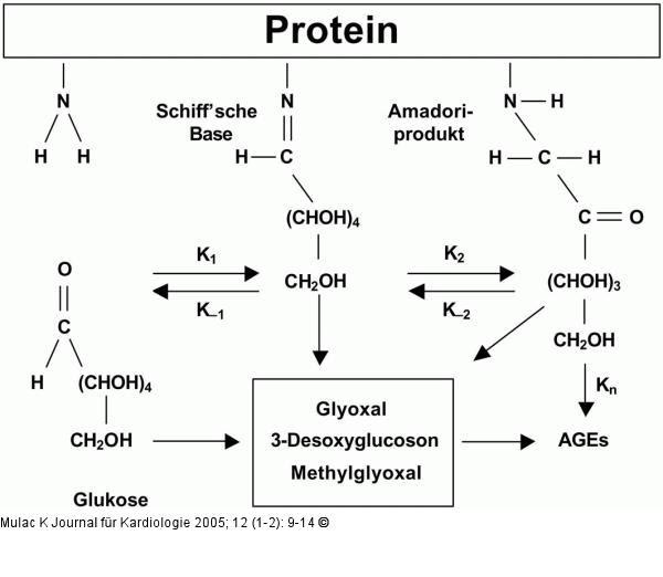 Alimentos e Nutrição - processamento e alterações