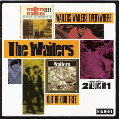 Wailers - 1965 Wailers Everywhere + 1966 Out of Our Tree