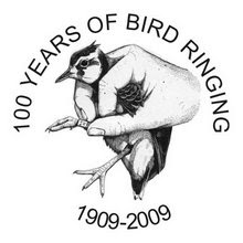 BTO Website