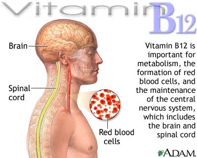 Vitamin B12 Deficiency Symptoms in Women