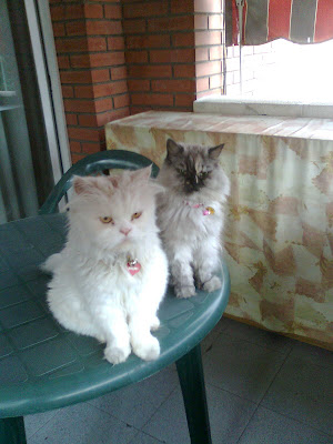Roni y Cati
