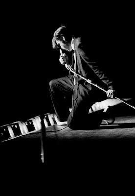 Elvis por Afdred Wertheimer