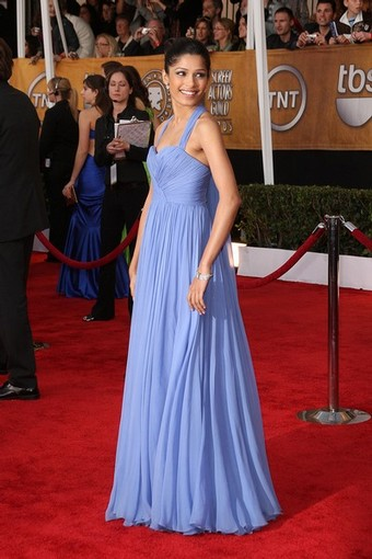 Freida Pinto red carpet 09 SAG Awards