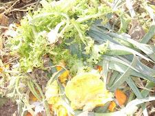 Despues de limpiar la verdura...