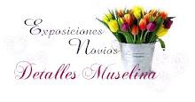 Exposiciones Detalles Muselina