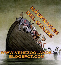 NUFRAGOS DEL GUAIRE: venezoolanos