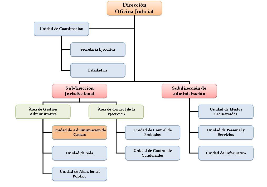 Oficina judicial trelew organigrama for Oficina judicial