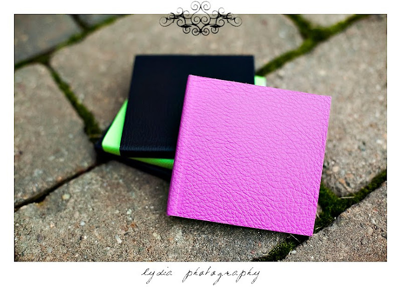 Mini Albums with different colored leather covers