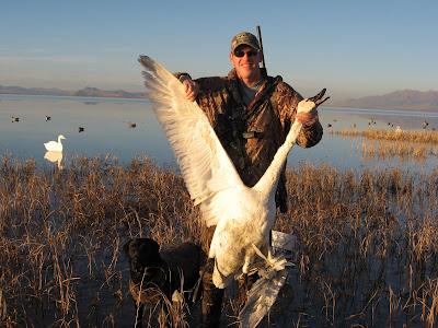 Swan+Hunt+004.jpg