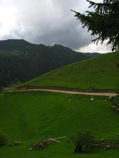Landscape Apuseni Mountain Romania
