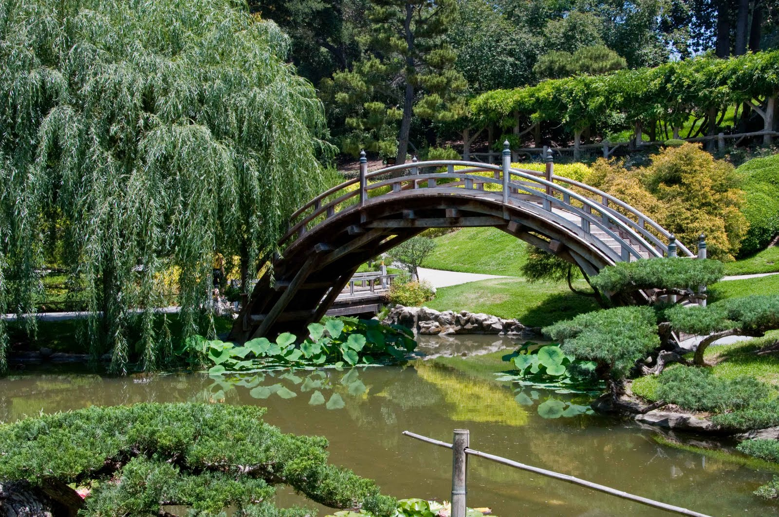 Jim Mcconnell Photography Huntington Botanical Gardens Pasadena Ca