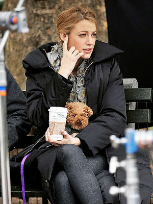 Blake Lively  on Blake Lively 2435dog Jpg