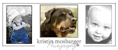 kristin mosbarger photography