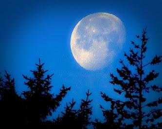 Lua 3