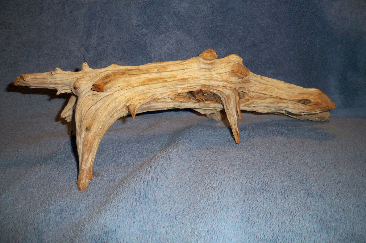 Seeing things driftwood animals for What can you make out of horseshoes