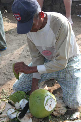 cutting coconut